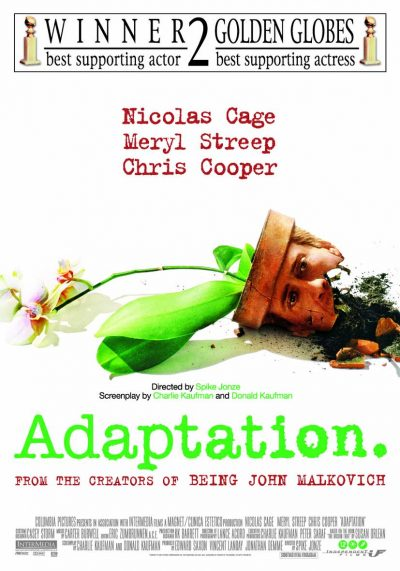 Adaptation